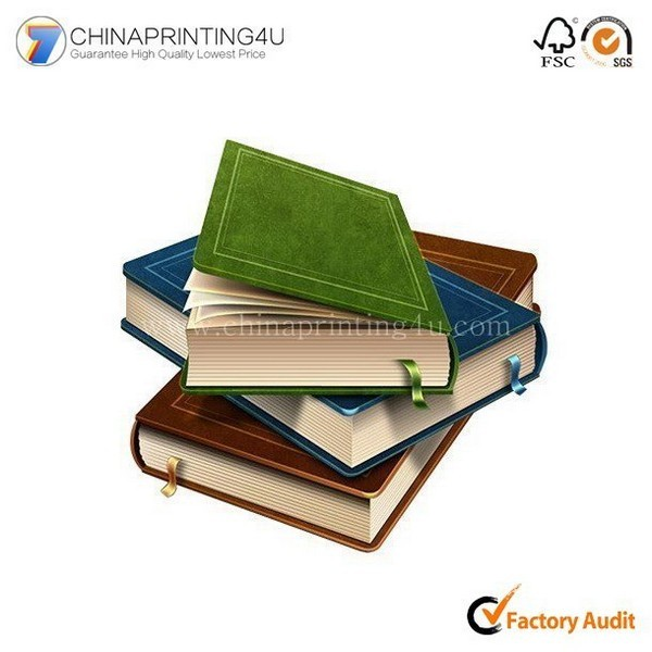Professional English Learning Book Chinese English Dictionary