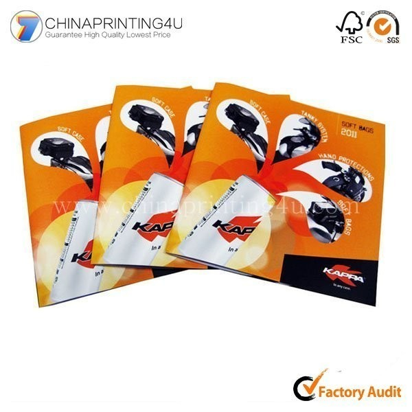 China Standard Size Professional Brochure Printing Service