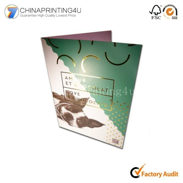 Trade Assurance Supplier Color Flyer Printing Foldable
