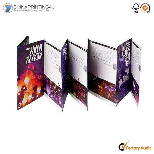 China Printing Company Printing Cheeap Price Brochure