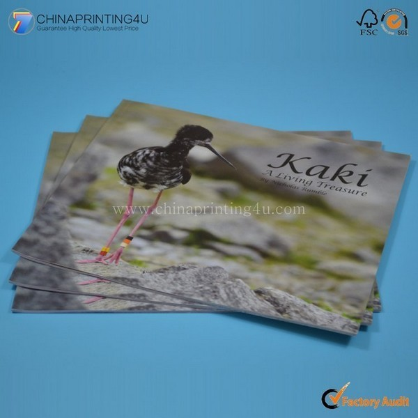 High Quality Cheap Factory Price Custom Book Printing