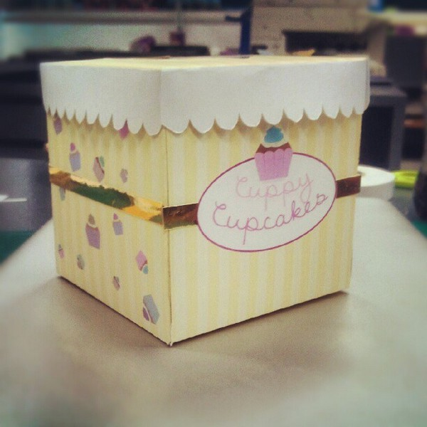 Custom Logo Printed Cupcake box