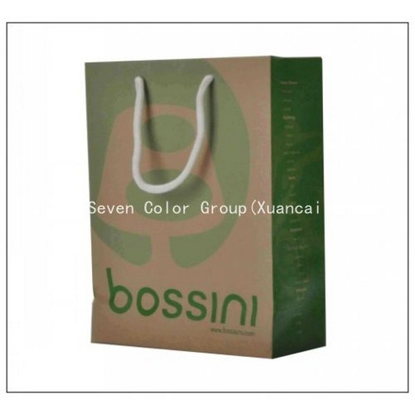 Shopping Paper Bags With Cotton Handles