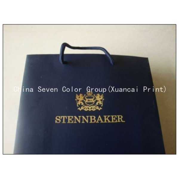 Asia Colorful Printing Paper Bag 12 Years Experience Factory
