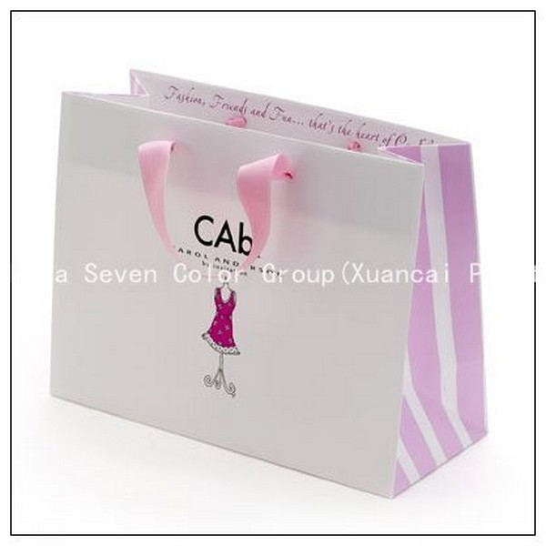 Paper Bag &Shopping Bag With Paper Handle