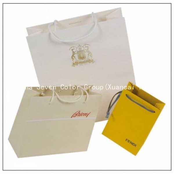 2018 Deluxe Brand Laminated Gift Paper Bag
